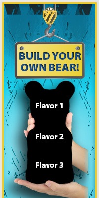 Build Your Own Bear!